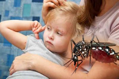 Deteksi Dini Dampak Buruk Demam Berdarah Pada Anak